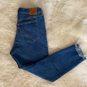 Levi's Premium Wedgie Skinny Jeans